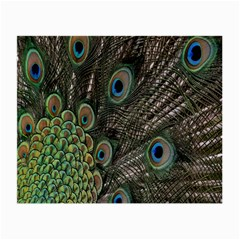 Close Up Of Peacock Feathers Small Glasses Cloth (2 Side) by Nexatart