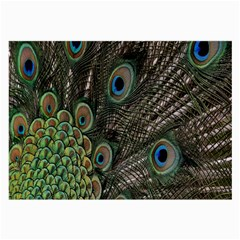 Close Up Of Peacock Feathers Large Glasses Cloth by Nexatart