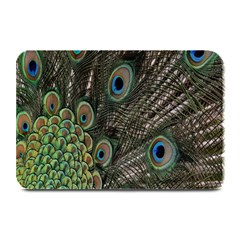 Close Up Of Peacock Feathers Plate Mats