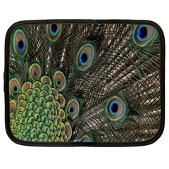 Close Up Of Peacock Feathers Netbook Case (xxl)