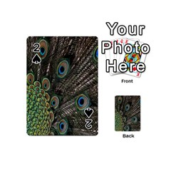 Close Up Of Peacock Feathers Playing Cards 54 (mini)