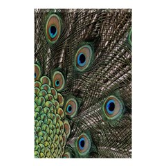 Close Up Of Peacock Feathers Shower Curtain 48  X 72  (small)  by Nexatart