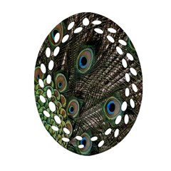 Close Up Of Peacock Feathers Oval Filigree Ornament (two Sides) by Nexatart