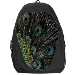 Close Up Of Peacock Feathers Backpack Bag