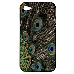 Close Up Of Peacock Feathers Apple Iphone 4/4s Hardshell Case (pc+silicone)