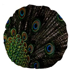 Close Up Of Peacock Feathers Large 18  Premium Round Cushions by Nexatart