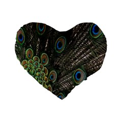 Close Up Of Peacock Feathers Standard 16  Premium Heart Shape Cushions by Nexatart