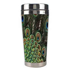 Close Up Of Peacock Feathers Stainless Steel Travel Tumblers by Nexatart