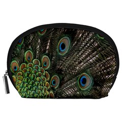 Close Up Of Peacock Feathers Accessory Pouches (large)  by Nexatart
