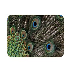 Close Up Of Peacock Feathers Double Sided Flano Blanket (mini)  by Nexatart