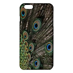 Close Up Of Peacock Feathers Iphone 6 Plus/6s Plus Tpu Case