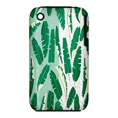 Banana Leaf Green Polka Dots Iphone 3s/3gs by Mariart