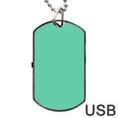 Aquamarine Solid Color  Dog Tag Usb Flash (two Sides) by SimplyColor