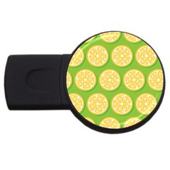 Lime Orange Yellow Green Fruit Usb Flash Drive Round (4 Gb) by Mariart
