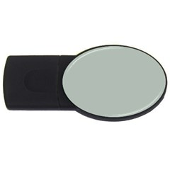 Ash Gray Solid Color  Usb Flash Drive Oval (4 Gb) by SimplyColor