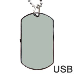 Ash Gray Solid Color  Dog Tag Usb Flash (two Sides) by SimplyColor