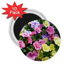 Lovely Flowers 17 2 25  Magnets (10 Pack)  by MoreColorsinLife