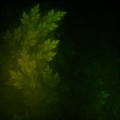 Beautiful Fractal Pines In The Misty Spring Night Magic Photo Cubes by jayaprime
