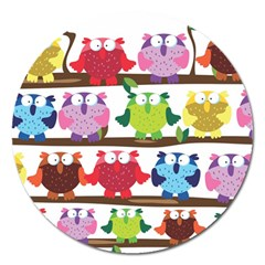 Funny Owls Sitting On A Branch Pattern Postcard Rainbow Magnet 5  (round) by Mariart