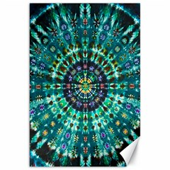 Peacock Throne Flower Green Tie Dye Kaleidoscope Opaque Color Canvas 20  X 30   by Mariart