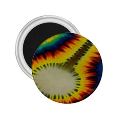 Red Blue Yellow Green Medium Rainbow Tie Dye Kaleidoscope Opaque Color 2 25  Magnets by Mariart