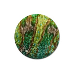 Chameleon Skin Texture Magnet 3  (round) by BangZart