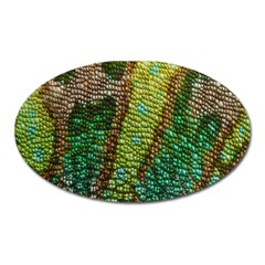 Chameleon Skin Texture Oval Magnet by BangZart