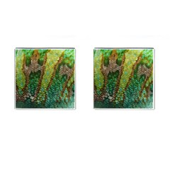 Chameleon Skin Texture Cufflinks (square) by BangZart