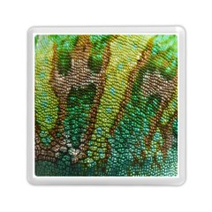 Chameleon Skin Texture Memory Card Reader (square)  by BangZart