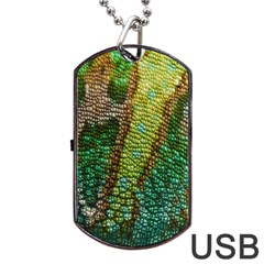 Chameleon Skin Texture Dog Tag Usb Flash (two Sides) by BangZart