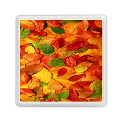 Leaves Texture Memory Card Reader (square)  by BangZart