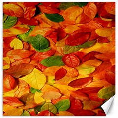Leaves Texture Canvas 20  X 20
