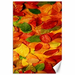 Leaves Texture Canvas 20  X 30   by BangZart