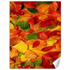 Leaves Texture Canvas 36  X 48   by BangZart