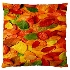 Leaves Texture Large Cushion Case (two Sides)