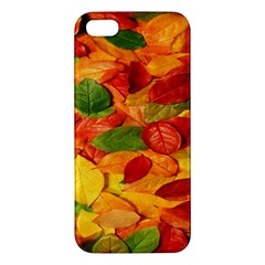 Leaves Texture Iphone 5s/ Se Premium Hardshell Case by BangZart