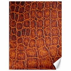 Crocodile Skin Texture Canvas 18  X 24