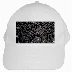 Spider Web Wallpaper 14 White Cap