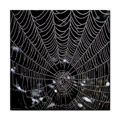 Spider Web Wallpaper 14 Tile Coasters by BangZart