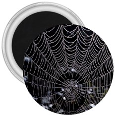 Spider Web Wallpaper 14 3  Magnets by BangZart