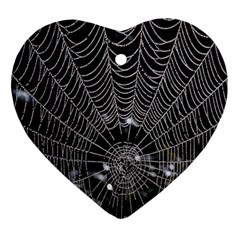 Spider Web Wallpaper 14 Ornament (heart) by BangZart