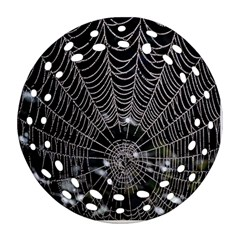 Spider Web Wallpaper 14 Ornament (round Filigree) by BangZart