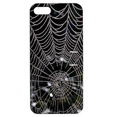 Spider Web Wallpaper 14 Apple Iphone 5 Hardshell Case With Stand by BangZart
