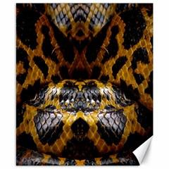 Textures Snake Skin Patterns Canvas 8  X 10
