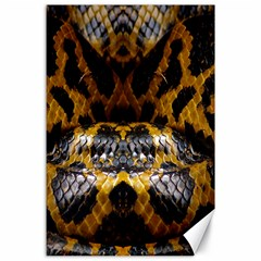 Textures Snake Skin Patterns Canvas 24  X 36  by BangZart