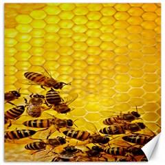 Sweden Honey Canvas 16  X 16