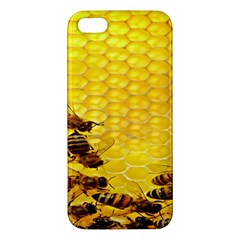 Sweden Honey Iphone 5s/ Se Premium Hardshell Case by BangZart