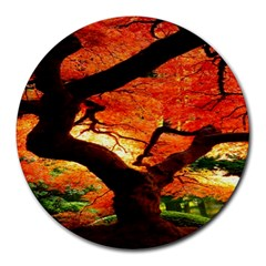 Maple Tree Nice Round Mousepads by BangZart