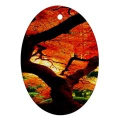 Maple Tree Nice Ornament (oval)