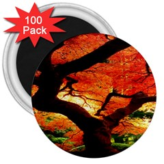 Maple Tree Nice 3  Magnets (100 Pack)
